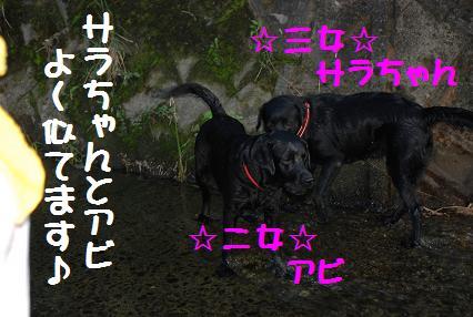 DSC_0994.9.23-2.jpg