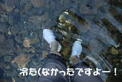 DSC_1132.10.6-5.jpg