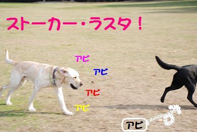 DSC_1781.18-5.jpg