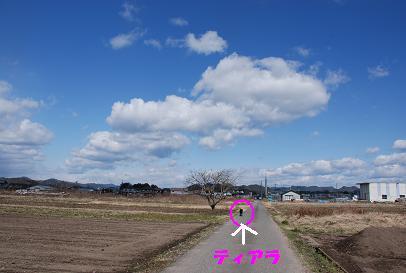 DSC_2738.2.28-6.jpg