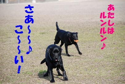 DSC_3089.3.4-10.jpg