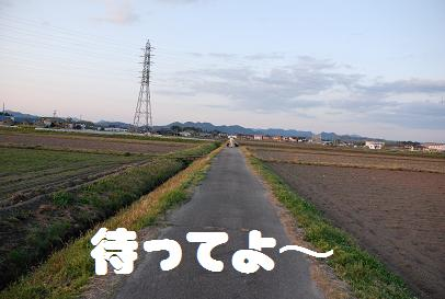 DSC_5928.4.19-2.jpg