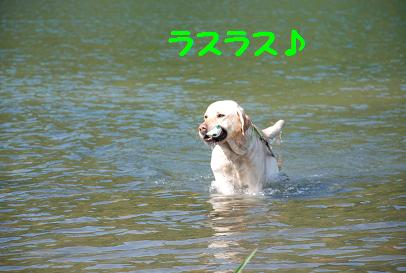 DSC_6768.5.3-3.jpg