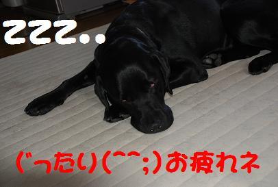 DSC_7083.5.14-3.jpg