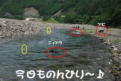 DSC_8644.7.1-3.4.jpg