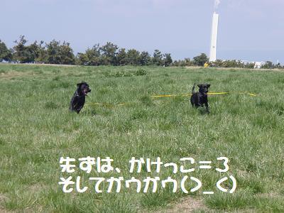 P3270020-9.jpg