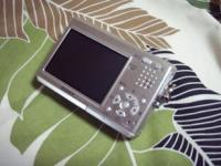 P9060007-2.jpg