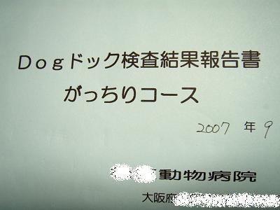 PA010025-4.jpg