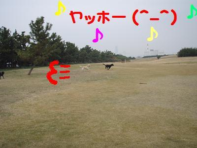 PB270051-10.jpg