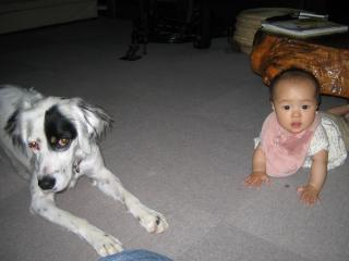 ミルクと姪っ子