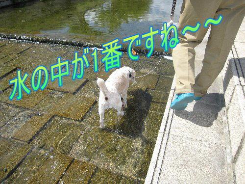 2011・09・25芦屋浜1