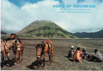 17_vo_indonesia.jpg