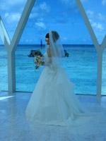 ブルーアステール花嫁