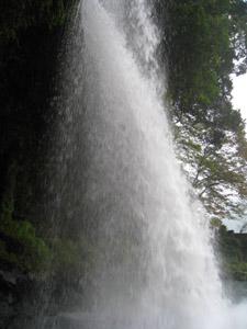 慈音の滝4