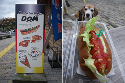 08-11-8-hotdog.jpg