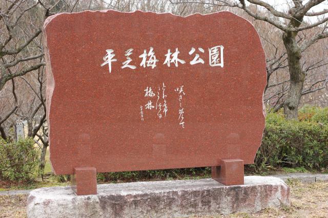 梅坪梅林公園1