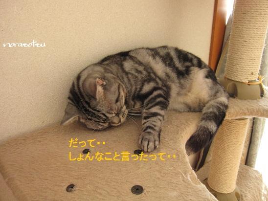 001_20110618120159.jpg