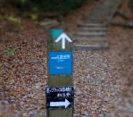 s11hosida.jpg
