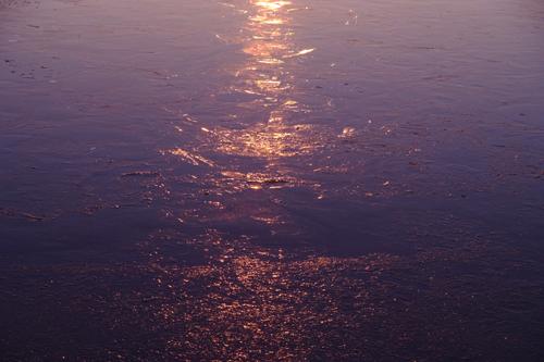 凍てる水面