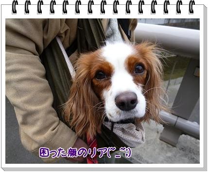 2012040803.jpg