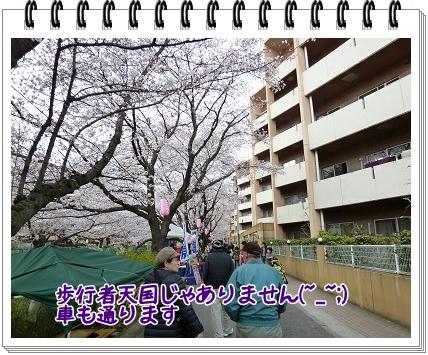 2012040804.jpg