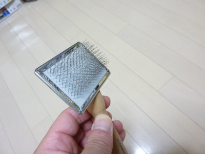 P1060620[1]