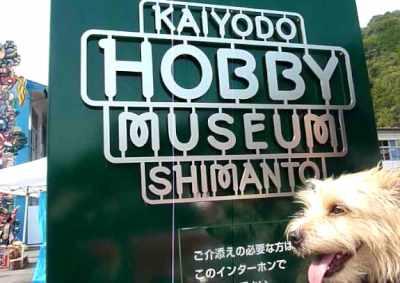 kaiyodo green sign[1]