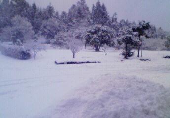201101200814001.jpg