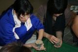 白菜の種まき(カップに土を入れる)