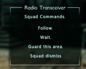 Enclave Commander Squad Commands