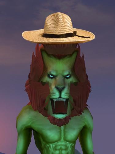 麦わら帽子02