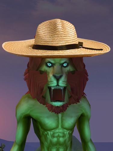 麦わら帽子03