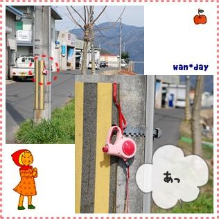 38-4_20090308151701.jpg