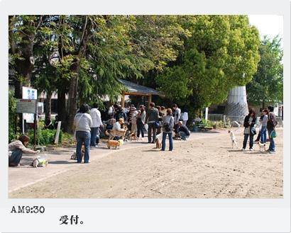 430-2_20090501095336.jpg