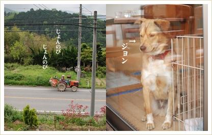 518-3_20090518123717.jpg