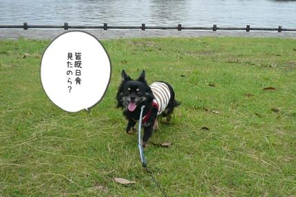 722-1_20090722114246.jpg