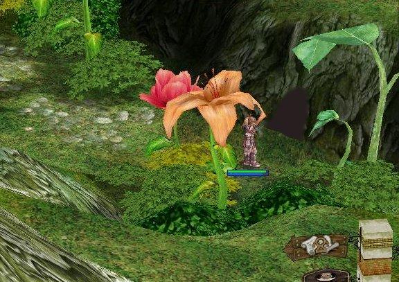 大きな草花に隠れるように、その洞穴はあった。