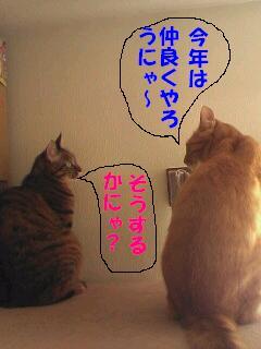 2007nenhoufu.jpg