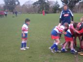 juniorrugby140504 017