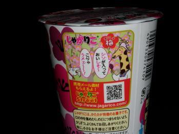 120128じゃがりこ (4)50