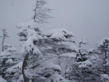 120120北横岳 (16)50
