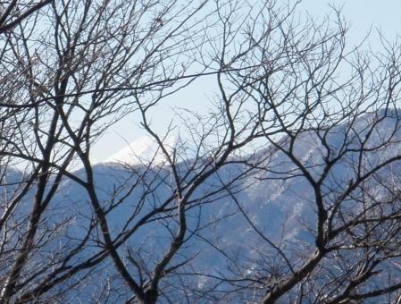 120211武甲山ほか (18)c