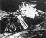 マンテル大尉のF-51ムスタング戦闘機の残骸