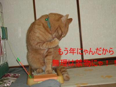 2008_10190004.jpg