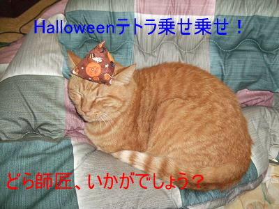 2008_10310006.jpg