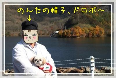 2010_1106_115951AA.jpg