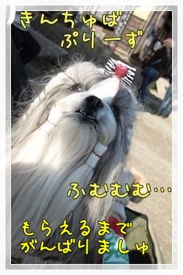 2010_1106_132802AA.jpg