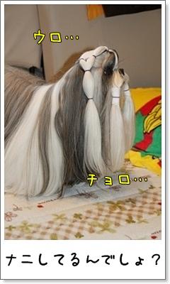 2010_1110_074641AA.jpg