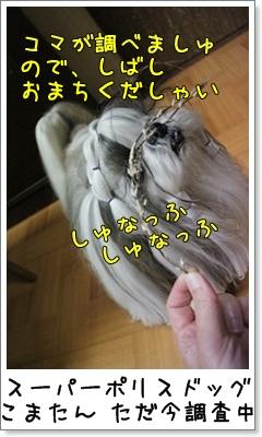2010_1110_193433AA.jpg