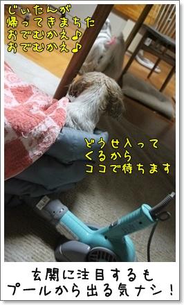 2010_1111_185903AA.jpg